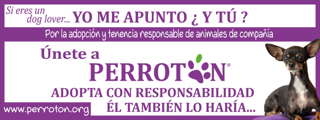 BANNER-OFICIAL-PERROTON-MADRID