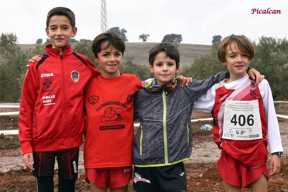 Novenos de Andalucía