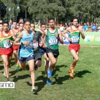 Gran participación en el España absolutos de cross por clubes con triunfo del Bikila Atletismo (hombres), F.C.Barcelona (mujeres) y Playas de Castellón (relevo mixto)