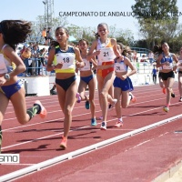 783 fotografías del Campeonato de Andalucía Sub 14 Zona Occidental celebrado en Carmona