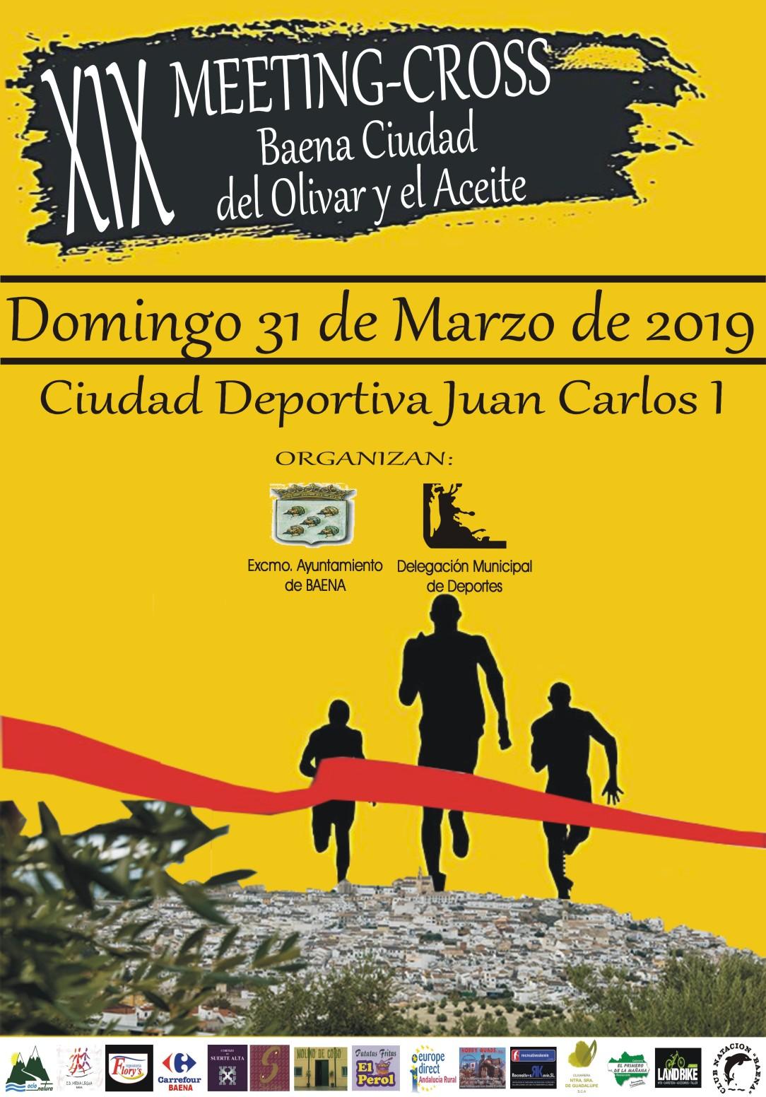 MEETING 2019 corregido