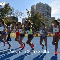Alta presencia de atletas en el Andaluz Sub14 celebrado en Sevilla
