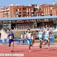 Amplia galería fotográfica del Campeonato de Andalucía Sub 16 (Footing Pepito-masatletismo)